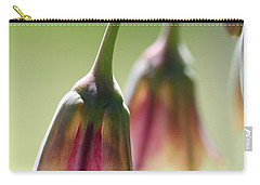 Sicilian Honey Garlic Carry-all Pouch by J McCombie