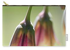 Sicilian Honey Garlic Carry-all Pouch