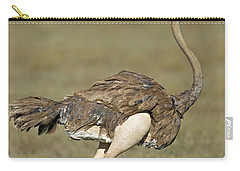 Side Profile Of An Ostrich Running Carry-all Pouch by Panoramic Images
