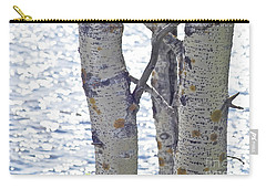 Silver Birch Trees At A Sunny Lake Carry-all Pouch