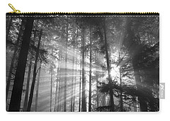 Silver Light Carry-all Pouch by Diane Schuster