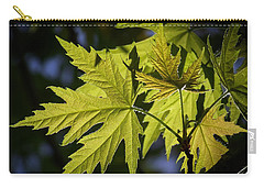 Silver Maple Carry-all Pouch