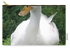 Sitting Duck Carry-all Pouch by Pamela Walton