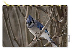 Carry-all Pouch featuring the photograph Sitting Pretty by David Porteus