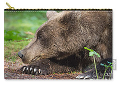 Sleeping Bear Carry-all Pouch