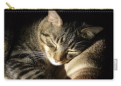 Sleeping Beauty Carry-all Pouch by Leslie Manley