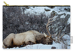 Carry-all Pouch featuring the photograph Sleeping Elk by Michael Chatt