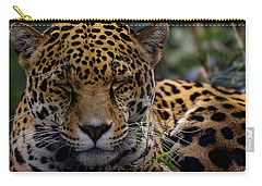 Sleeping Jaguar Carry-all Pouch by Liz Masoner