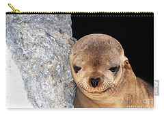 Sleepy Baby Sea Lion Carry-all Pouch by Susan Wiedmann