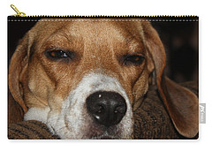 Carry-all Pouch featuring the photograph Sleepy Beagle by John Telfer
