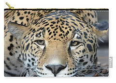 Sleepy Jaguar Carry-all Pouch