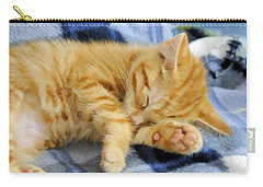 Carry-all Pouch featuring the photograph Sleepy Time by Kenny Francis