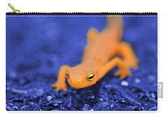 Salamander Carry-all Pouches
