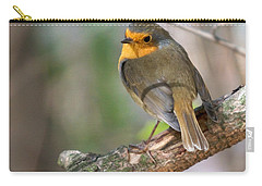 Small Bird Robin Carry-all Pouch