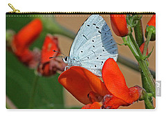 Small Blue Butterfly Carry-all Pouch by Tony Murtagh