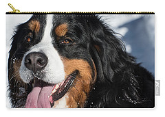 Smiling Bernese Mountain Dog In Winter Snow Carry-all Pouch by Gary Whitton