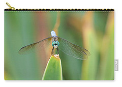 Smiling Dragonfly Carry-all Pouch by Karen Silvestri