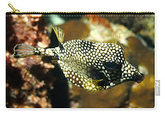 Carry-all Pouch featuring the photograph Smooth Trunkfish by Amy McDaniel