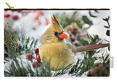 Carry-all Pouch featuring the photograph Snow Cardinal by Christina Rollo
