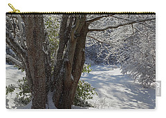 Snow Sparkles Carry-all Pouch by Dianne Cowen