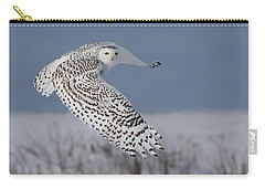 Snowy In Action Carry-all Pouch by Mircea Costina Photography