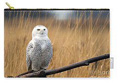 Snowy Owl On Branch Carry-all Pouch