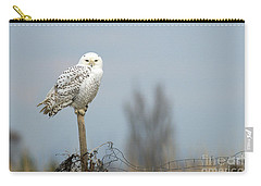 Snowy Owl On Fence Post 2 Carry-all Pouch