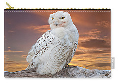 Snowy Owl Perched At Sunset Carry-all Pouch