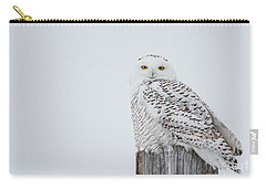 Snowy Owl Perfection Carry-all Pouch by Cheryl Baxter