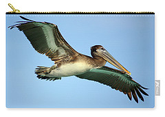 Carry-all Pouch featuring the photograph Soaring Pelican by Suzanne Stout