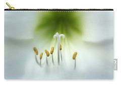 Soft Beauty Carry-all Pouch by Lynn Sprowl
