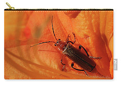 Soldier Beetle Carry-all Pouch