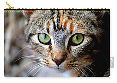 Carry-all Pouch featuring the photograph Soul Cat by Deena Stoddard