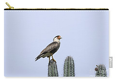 Southern Crested-caracara Polyborus Plancus Carry-all Pouch by David Millenheft