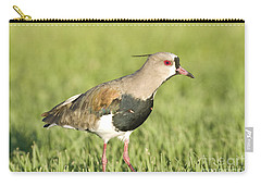 Southern Lapwing Carry-all Pouch