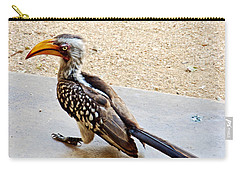 Southern Yellow-billed Hornbill In Kruger National Park-south Africa Carry-all Pouch