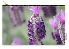 Carry-all Pouch featuring the photograph Spanish Breeze by Amy Gallagher
