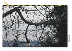 Spider Tree Carry-all Pouch by David Trotter
