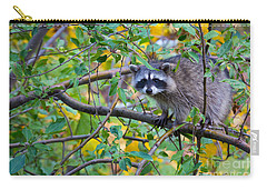 Spokane Raccoon Carry-all Pouch by Inge Johnsson