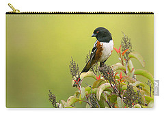 Carry-all Pouch featuring the photograph Spotted Towhee by Ram Vasudev