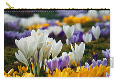 Spring Crocus Carry-all Pouch by Dianne Cowen