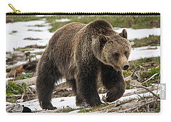 Carry-all Pouch featuring the photograph Spring Grizzly Bear by Jack Bell