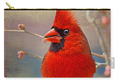 Spring Male Norther Cardinal Carry-all Pouch by Debbie Portwood