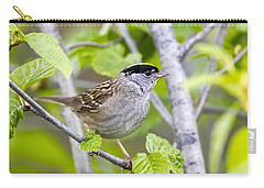 Spring Scene Carry-all Pouch by Doug Lloyd