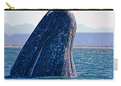 Carry-all Pouch featuring the photograph Spyhopping by Don Schwartz