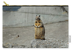 Carry-all Pouch featuring the photograph Squirrel At Lover's Point  by Susan Wiedmann