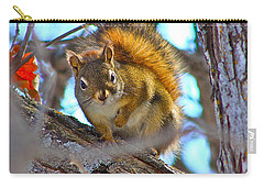 Carry-all Pouch featuring the photograph Squirrel Duty. by Johanna Bruwer