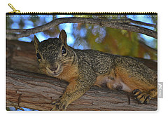Squirrel On Watch Carry-all Pouch