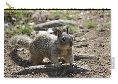 Squirrel Play  Carry-all Pouch