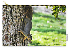 Squirrel With Pecan Carry-all Pouch by Debbie Portwood
